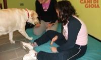 Setting di Pet Therapy